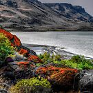 Raw Beauty by Charles & Patricia   Harkins ~ Picture Oregon