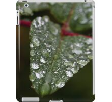 Rain Covered Leaf iPad case iPad Case/Skin