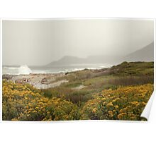 Misty Cliffs Poster