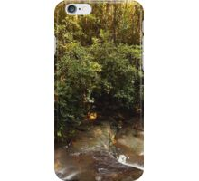Serenity Falls iPhone Case/Skin