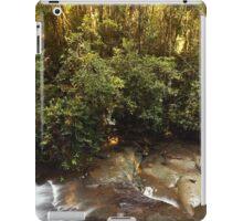 Serenity Falls iPad Case/Skin