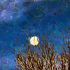 Colorado Moon by RC deWinter