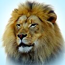 The King! by Barry Hobbs