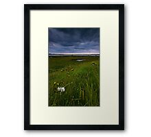 Stormy Evening Framed Print