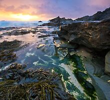 Little Fistral by Thomas Harvey