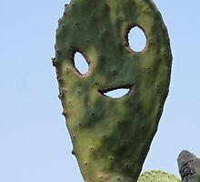 The Happy Cactus by Graham Geldard