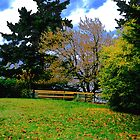 Park Fence and Trees by kendlesixx