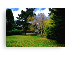 Park Fence and Trees Canvas Print