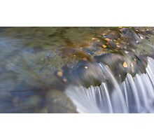 Leafs in autumn stream. Photographic Print