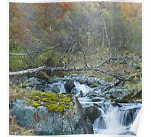 Autumn stream. Poster