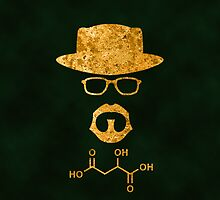 Breaking Bad - Walter & Apple by versutia