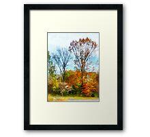 Tall Autumn Trees Framed Print
