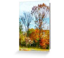 Tall Autumn Trees Greeting Card