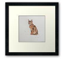 Swift Art, Cat Framed Print