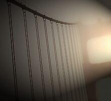 Golden Gate Bridge by Morgan Wright