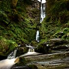 Pistyll Rhaeadr by Roddy Atkinson