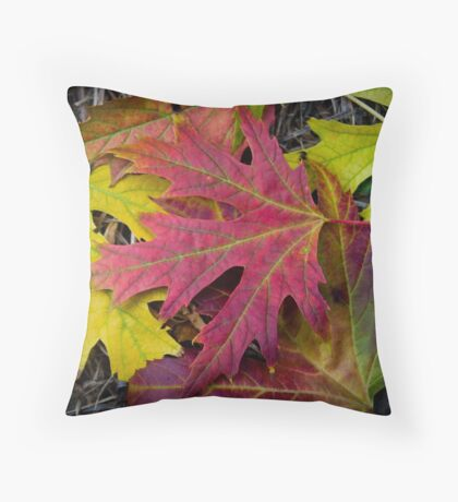 The Colors of Autumn Throw Pillow