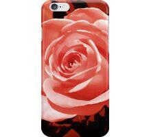 red rose flower i pod/i phone case iPhone Case/Skin