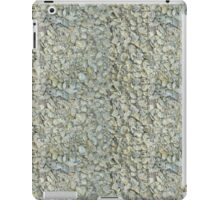 Inverted Oyster Shells Abstract iPad Case/Skin