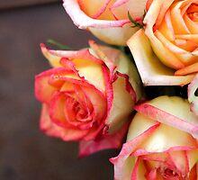 Rose Petals by AbigailJoy