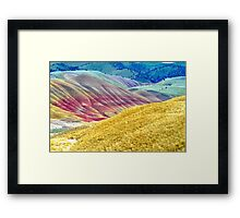 Innocent Delight Framed Print