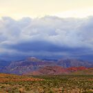 Red Rock Canyon 5 by Tracy Friesen