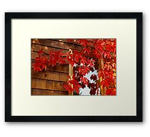 Autum Through the Looking Glass Framed Print