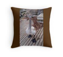 Talkative Swan Throw Pillow
