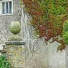 The Ivy Clad Castle by Fara