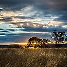 elcombe sunset 2 by Candice O'Neill
