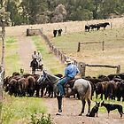 When Good Heifers Go Bad 1 by Candice O'Neill