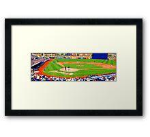 tiny baseball game Framed Print