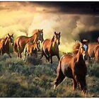 High Desert Thunder by Arla M. Ruggles