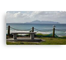 Seagulls at Mangawhai Surf Beach Canvas Print