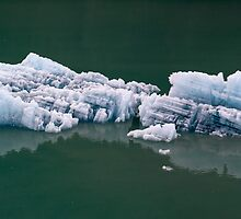 Alaska Glacier Ice by Bill D. Bell