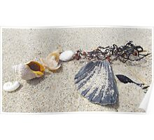 Shells on Te Arai Surf Beach Poster
