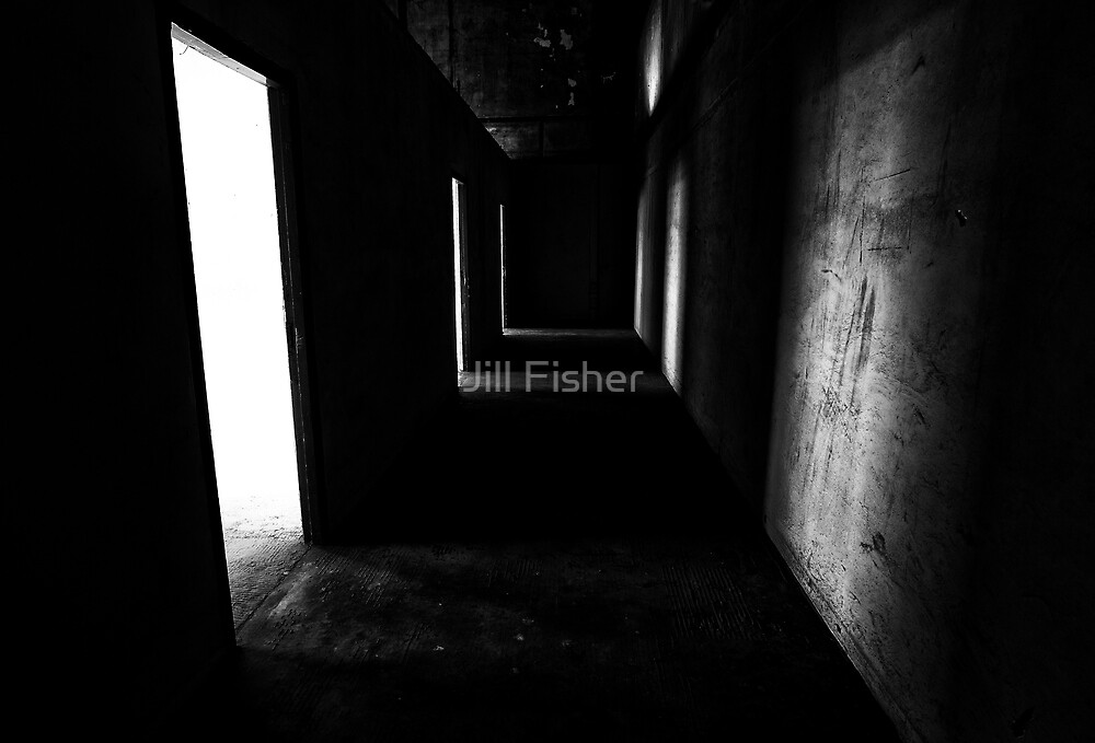 Into the Darkness by Jill Fisher
