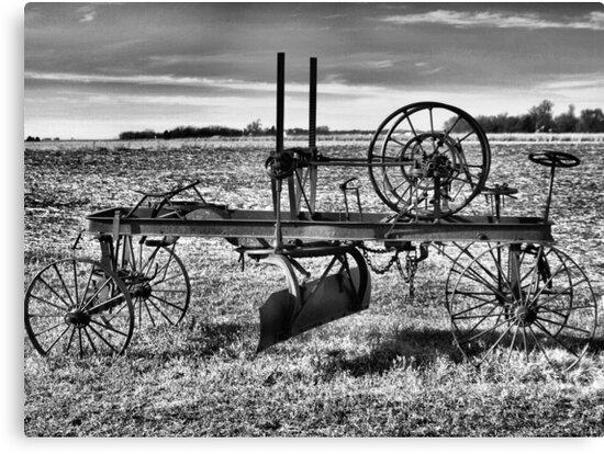 Horse Drawn Road Grader by Scott Hendricks