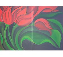 Red Tulip Diptych Photographic Print