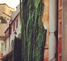Rome by TaylorAXO