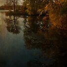 Dusk in the park by miketaylor205