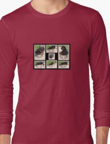 Collage Of Puppy Rottweiler Sitting In Food Bowl Long Sleeve T-Shirt