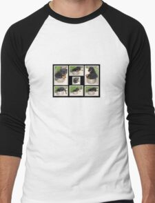 Collage Of Puppy Rottweiler Sitting In Food Bowl Men's Baseball ¾ T-Shirt
