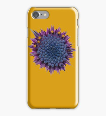 Abstract African Daisy iPhone Case/Skin