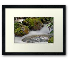 Rainforest gallery, cement creek Framed Print
