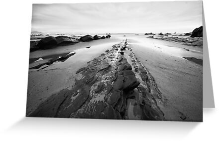 Black and White Seascape by Unai Ileaña