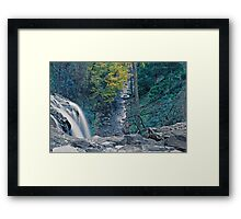 Water and leaves Framed Print