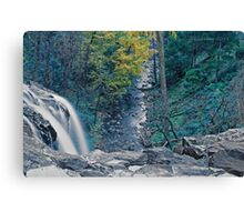 Water and leaves Canvas Print