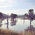 Lake Hume, Rural NSW by Sarah Moore