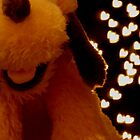 Pluto Christmas Bokeh by Andy Green